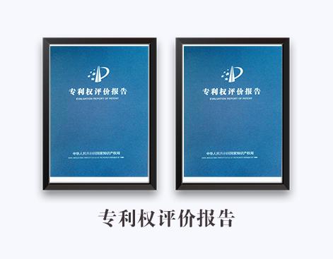 专利权评价报告