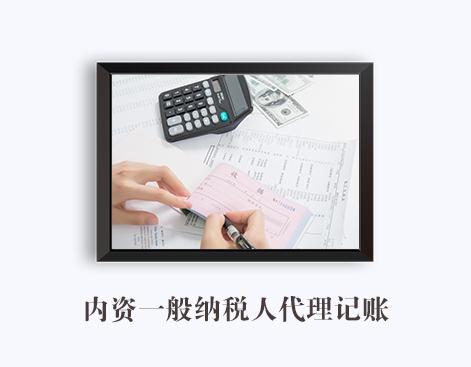 内资一般纳税人代理记账